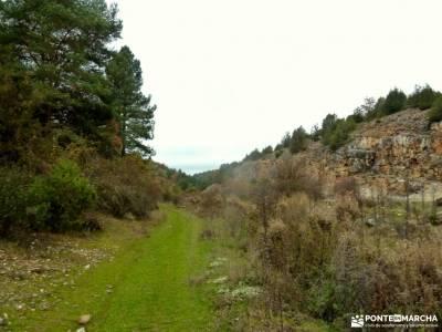 Cañones Río Lobos,Valderrueda;grupos para caminar por madrid ruta de los almendros senderismo gour